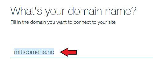 Wix enter domain